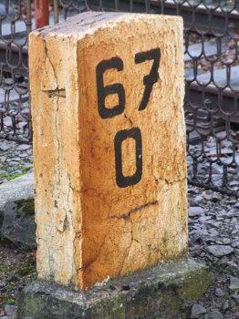 67_es_sirko_350