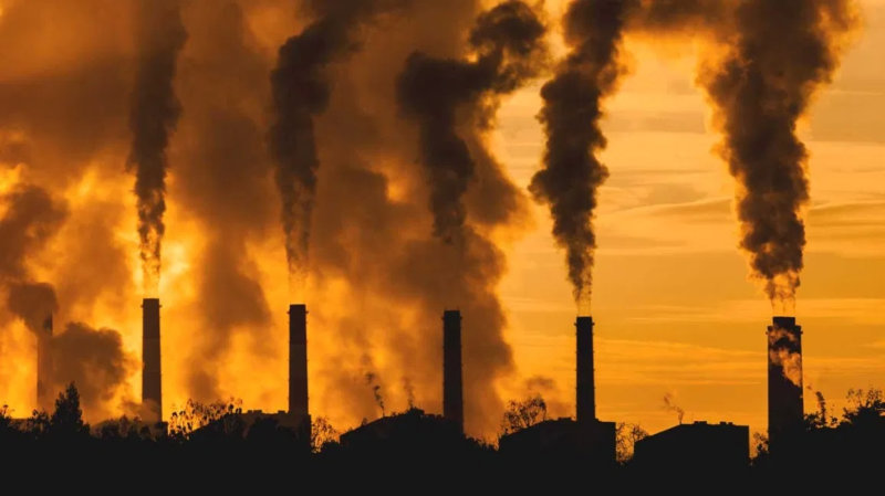Ez megint megbukott: eredménytelennek nyilvánították a biomassza-fűtőmű megépítésére kiírt közbeszerzést